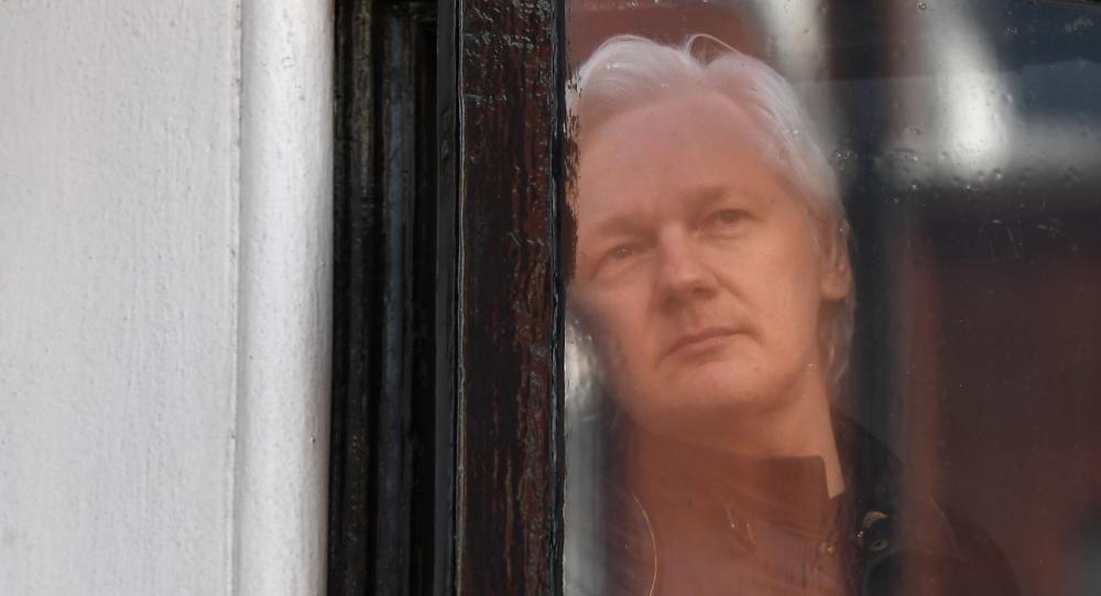 Założyciel portalu WikiLeaks Julian Assange w oknie ambasady Ekwadoru w Londynie