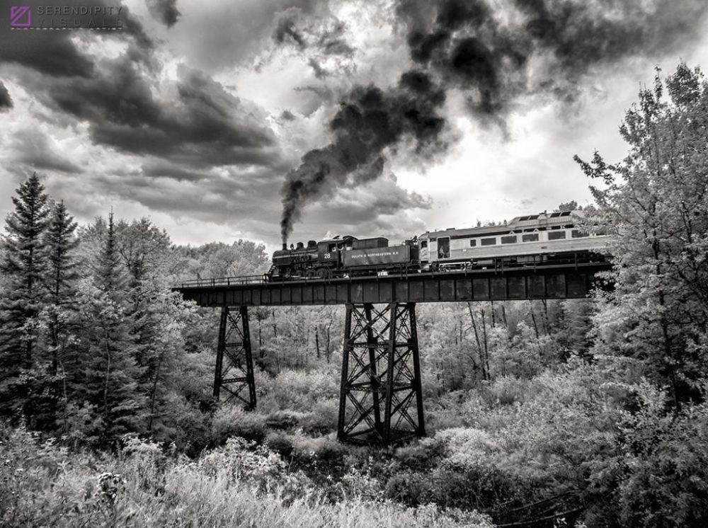 Zdjęcie fotografa Kena Slute, uczestnika konkursu fotografii w podczerwieni Life in Another Light