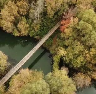 Emeryt odbudował most za własne pieniądze