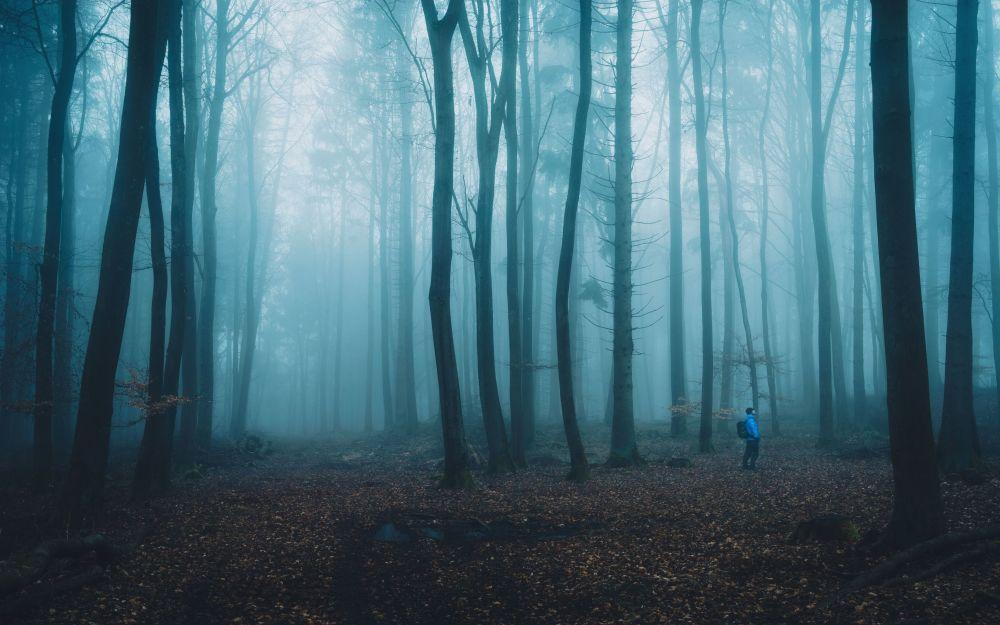 To tajemnicze zdjęcie wykonał fotograf z Niemiec - Alexander Schitschka w ramach konkursu fotograficznego World's Best Photos of #Blue2019