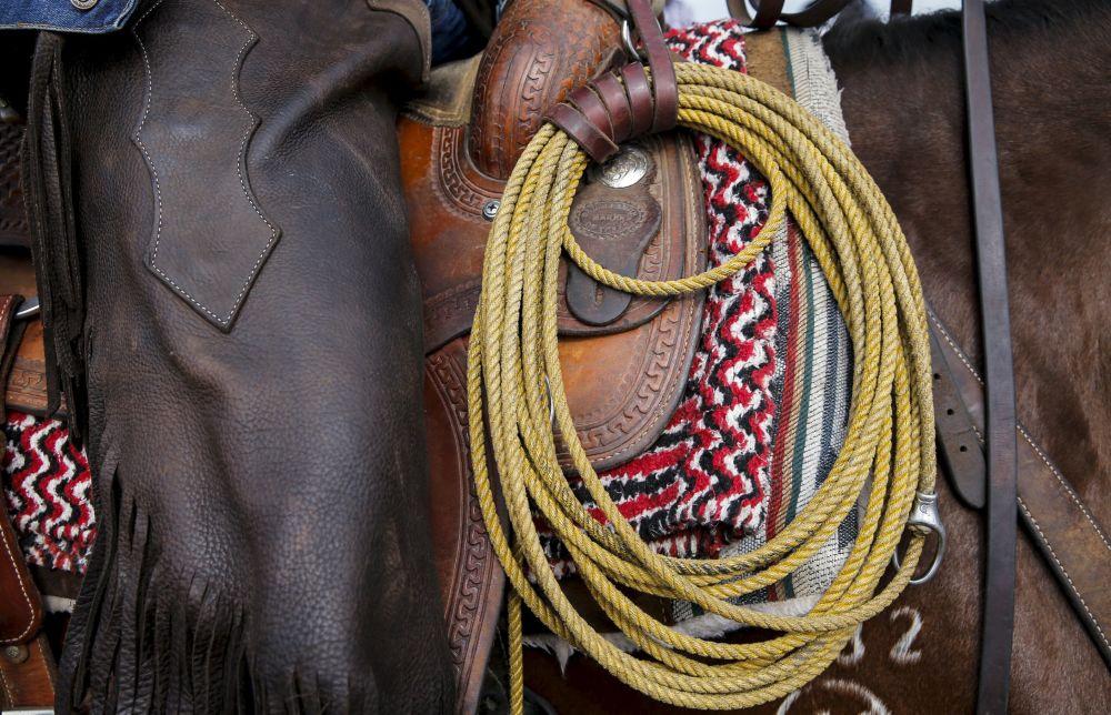 Lasso uczestnika zawodów Rosyjskie rodeo pod Briańskiem