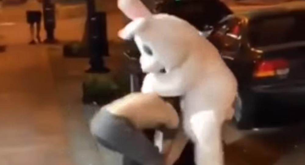 Wielkanocny królik pobił napastnika