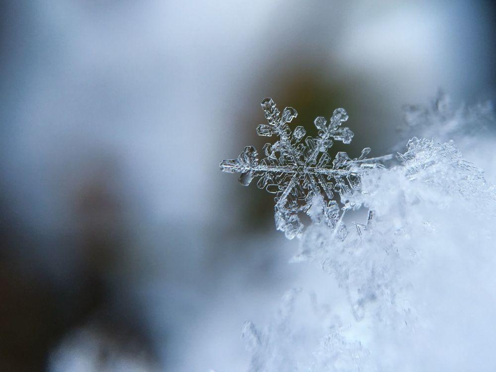 Płatek śniegu.