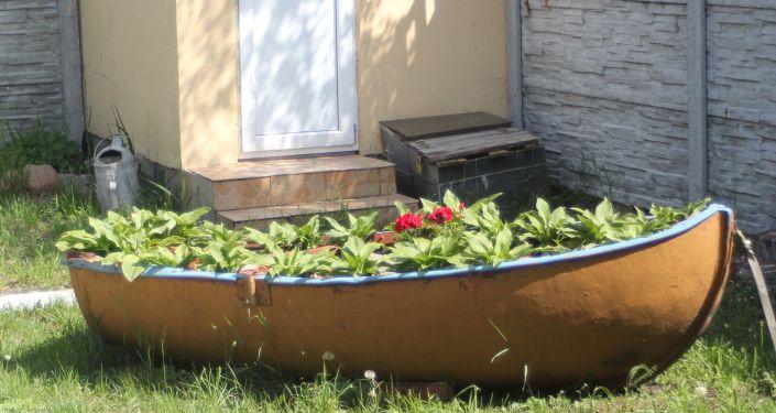 Klomb zrobiony z łódki – typowy pejzaż rybackiej Kosy