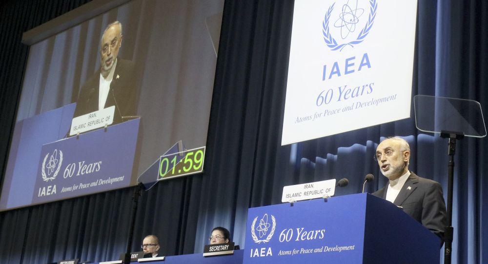 Szef Irańskiej Organizacji Energii Atomowej Ali Akbar Salehi. Zdjęcie archiwalne