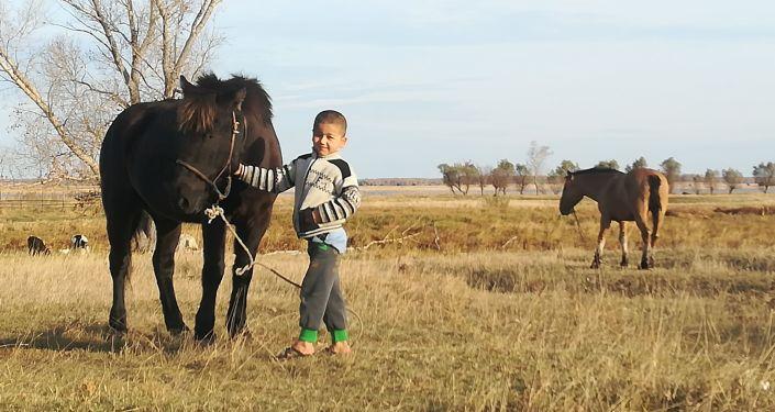 Podróż z Mongolii do Polski