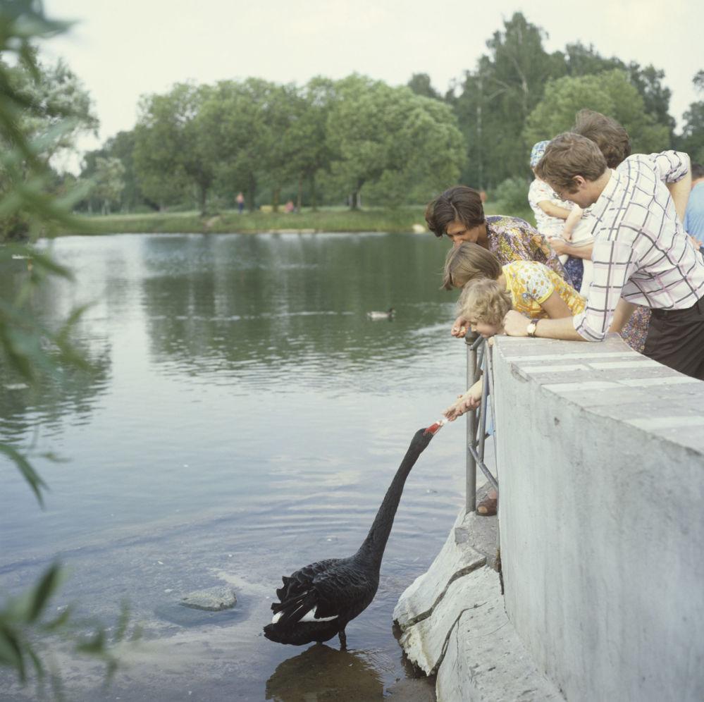 Dzieci w ogrodzie botanicznym, 1979 rok
