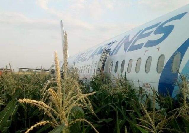 Awaryjne lądowanie samolotu A321 w Moskwie