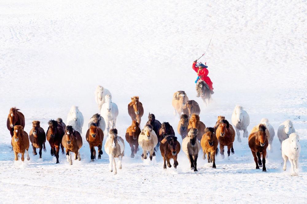 """Zdjęcie """"Snow Horseman"""" fotografa z Birmy Zay'a Yara Lina na konkursie fotograficznym AGORA Awards 2019."""