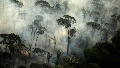 Dym nad płonącym lasem podczas pożaru w dżungli amazońskiej w pobliżu Porto Velho, Rondonia, Brazylia.