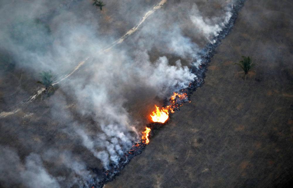 Widok z góry pożaru w dżungli amazońskiej w pobliżu Porto Velho, Rondonia, Brazylia.