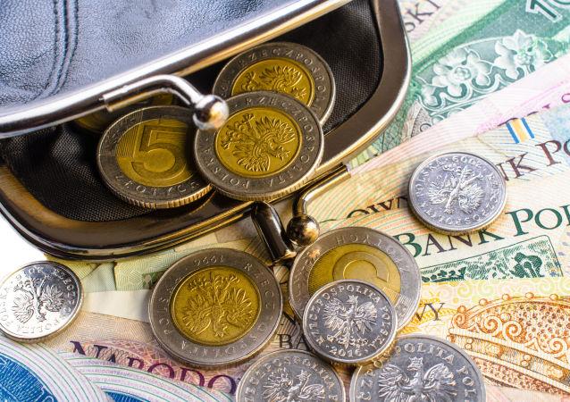 Portfel z polskimi pieniędzmi, polskie złote