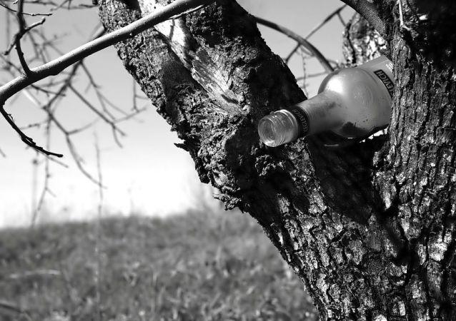Butelka wódki na drzewie