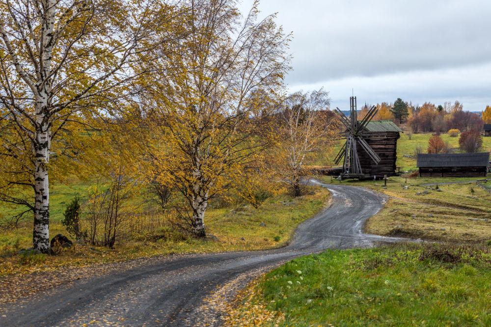Wiatrak ze wsi Woronij w Państwowym Rezerwacie Historyczno-Architektonicznym Kiży, Karelia
