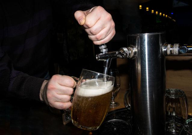 Barman nalewa piwo