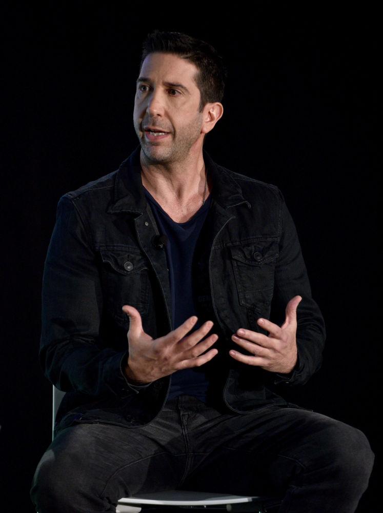 David Schwimmer w 2016 roku