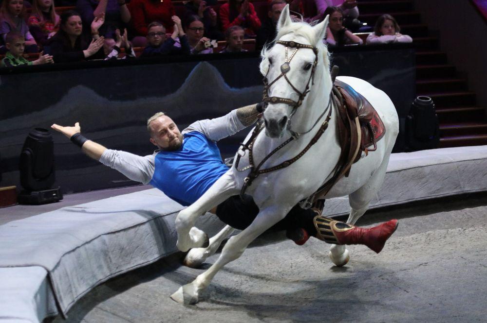 Otwarta próba Wielkiego Moskiewskiego Cyrku Państwowego