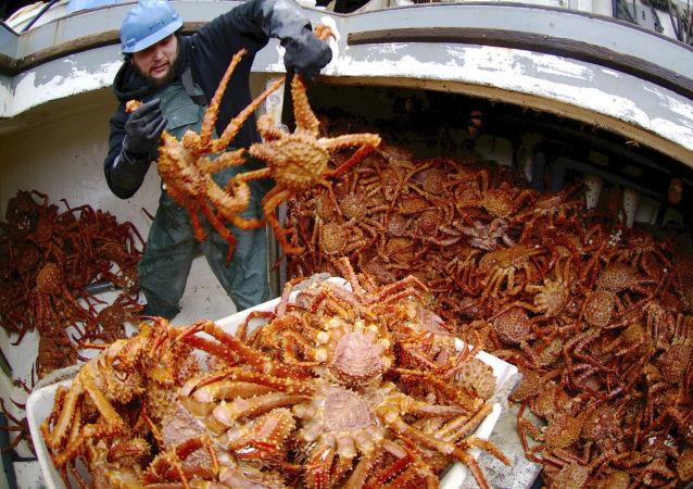 Połów krabów
