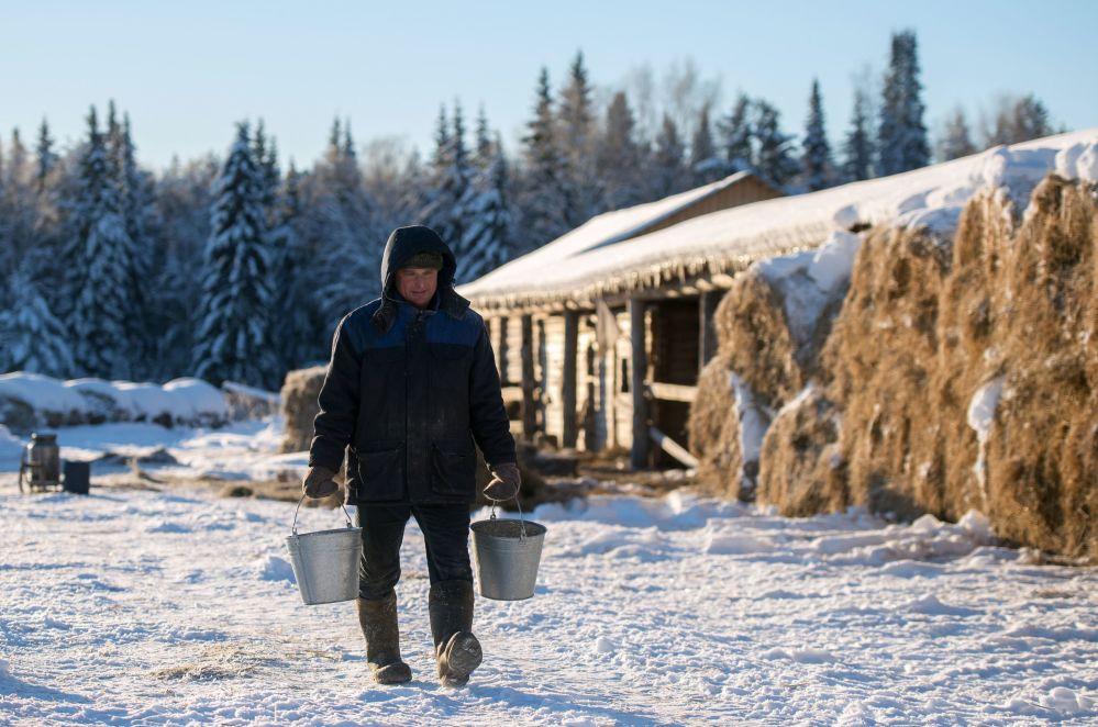 Przedsiębiorca Sergiej Benke niesie pokarm dla koni