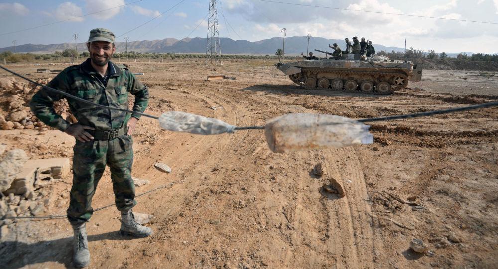 Żołnierze syryjskiej armii na pozycjach bojowych 20 km od miasta Palmira
