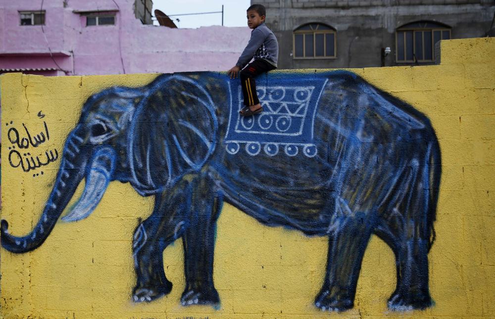 Palestyński chłopiec siedzi na słoniu namalowanym na murze w obozie dla uchodźców w Gazie