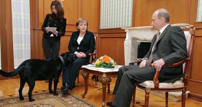 Władimir Putin i Angela Merkel podczas spotkania w Soczi