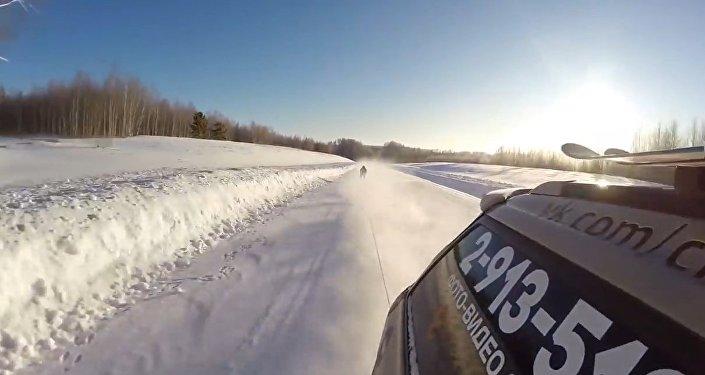 Rosyjski śmiałek pędzi po szosie na nartach z prędkością130 km na godzinę.