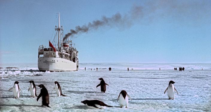 Statek Kooperacja u brzegu Antarktydy