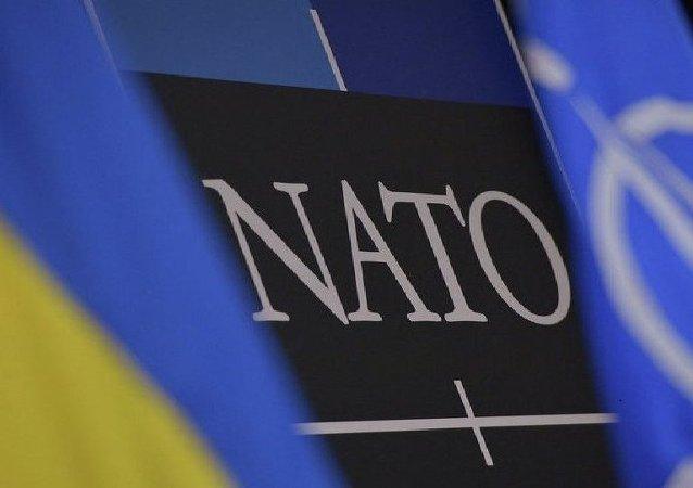 Flagi Ukrainy i NATO