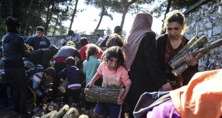 Uchodźcy zbierający kawałki drzewa dla rozpalenia ogniska w greckiej Idomenii