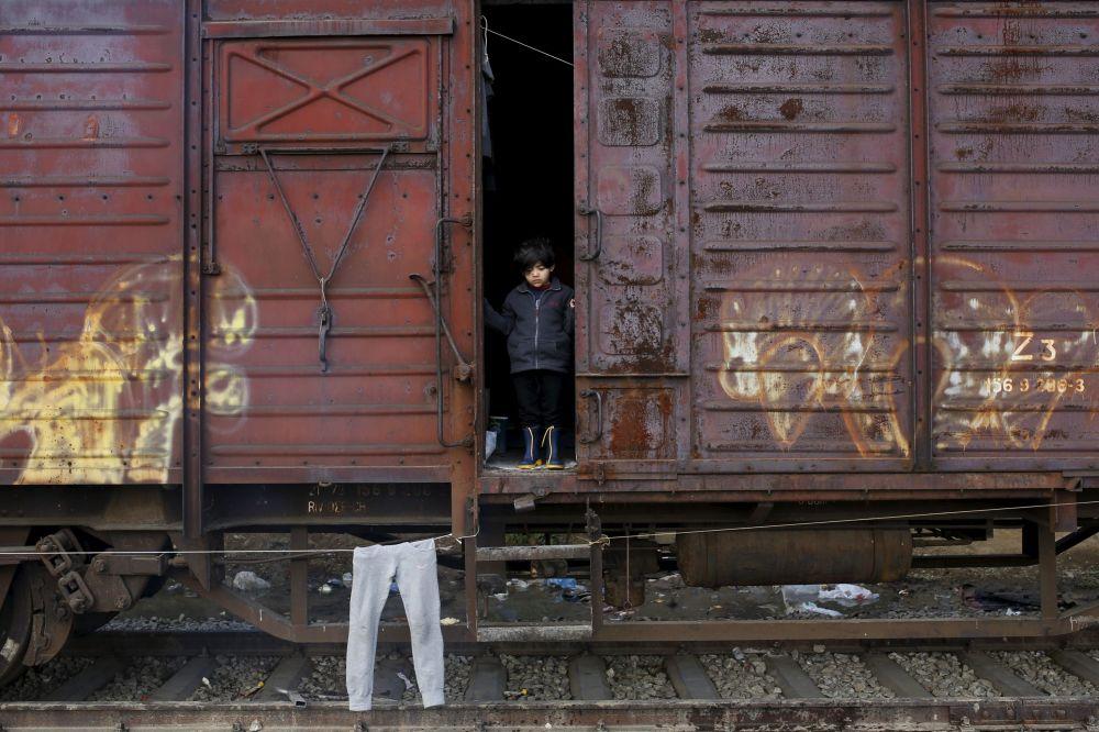 Dziecko wyglądające z wagonu w zaimprowizowanym obozie dla imigrantów na granicy  Grecji i Macedonii