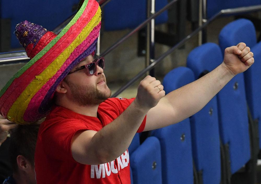 Kibic podczas meczu Dania-Czechy