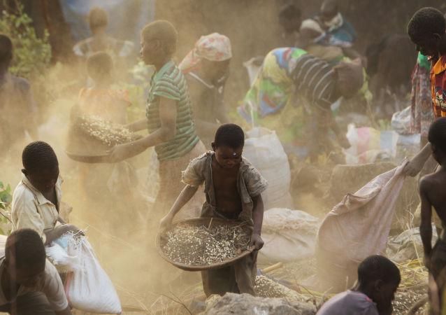 Kobiety i dzieci zbierają ziarno w miejscu wypadku ciężarówki przewożącej ziarno (Republika Malawi, Afryka).