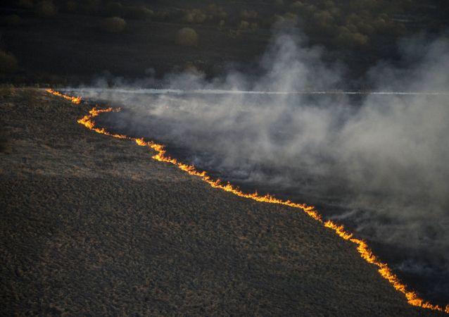 Pożar poszycia leśnego na Ukrainie