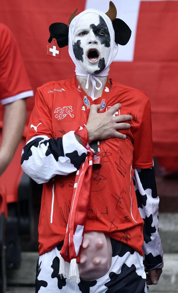 Szwajcarscy kibice podczas Euro-2016