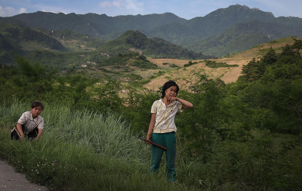 Plony zbierane są z reguły ręcznie. Dzieci często pracują w polu na równi z dorosłymi.