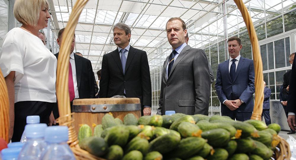"""Premier Rosji Dmitrij Miedwiediew z wizytą w szklarni """"Matwiejewskoje"""" w obwodzie moskiewskim"""