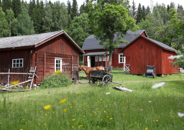 Fińska ferma