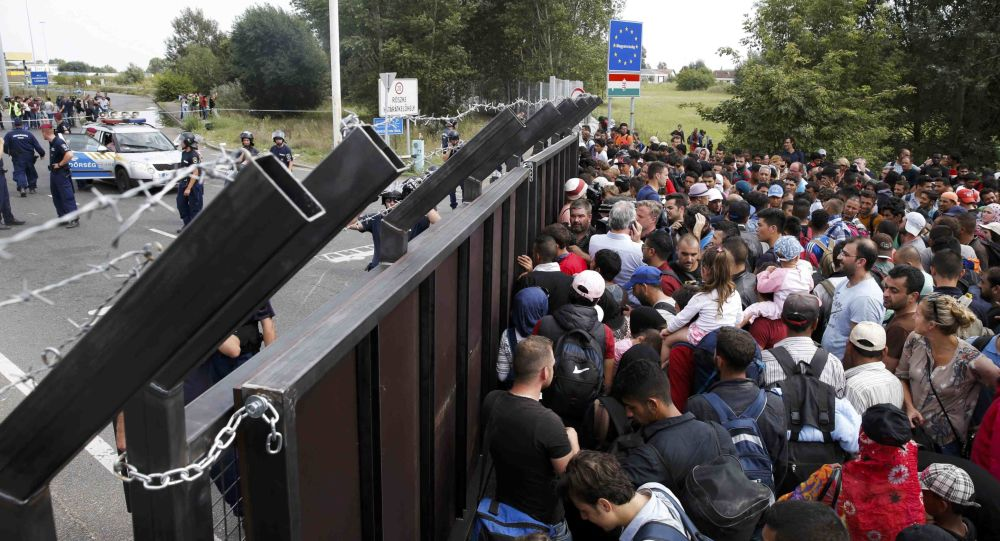 Migranci na granicy serbsko-węgierskiej