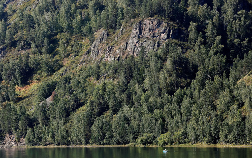 Tajga wzdłuż rzeki Jenisej, Syberia