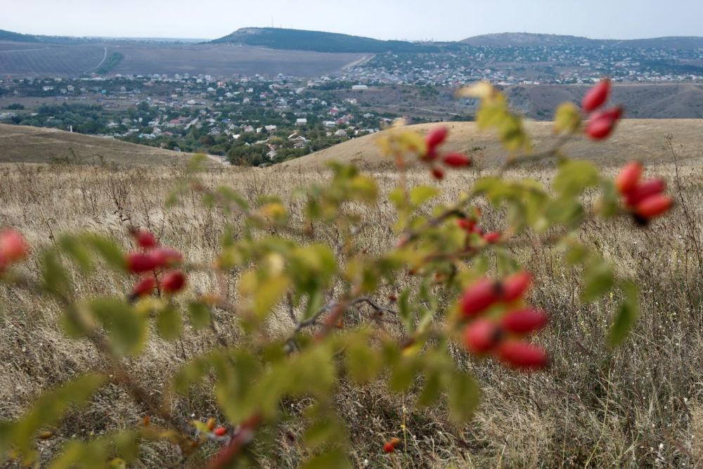 Miejscowość Klinowka na Krymie