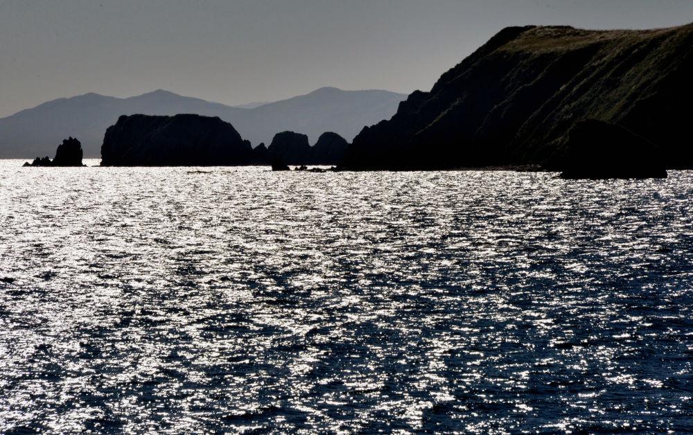 To prawdziwy raj dla smakoszów owoców morza – ogromne dalekowschodnie kraby, strzykwy, małże, krewetki, jeżowce, przegrzebki, ośmiornice, wodorosty…