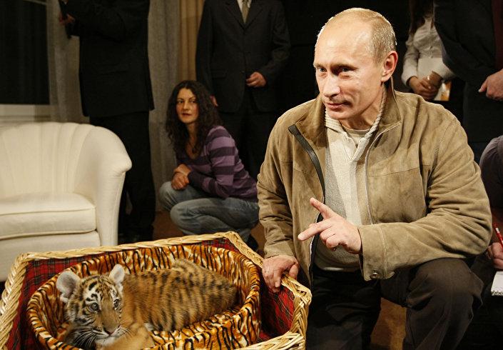 W 2008 roku na urodziny szefa państwa podarowano mu tygrysa syberyjskiego