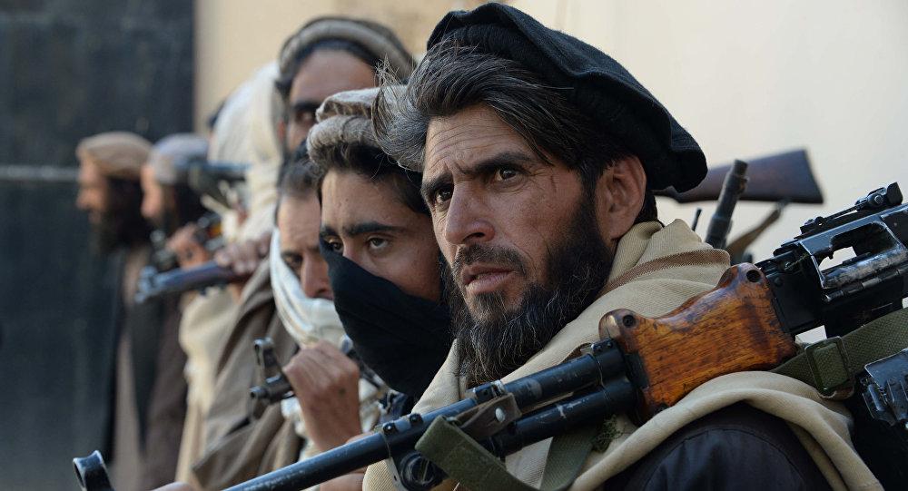 Talibowie, Afganistan