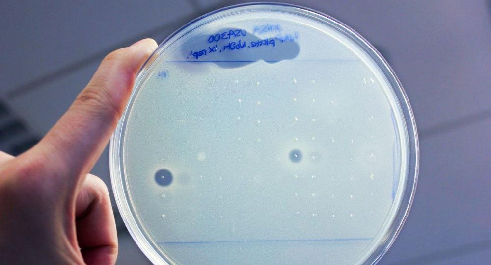 Antybiotyki odkryte w ciele człowieka