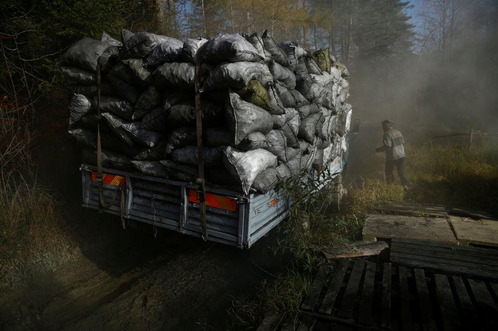 Węglarz na terenie wypału drewna, w lesie nieopodal Bieszczad w Polsce