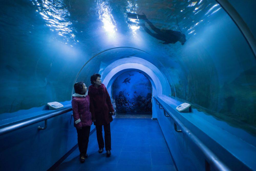 Podwodny tunel znajdujący się na terenie centralnego zoo Pjongjangu