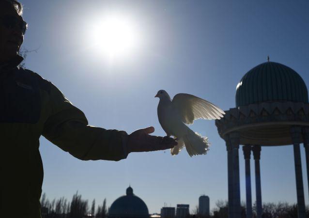 Mężczyzna puszcza gołębie na jednej z ulic w Taszkencie.