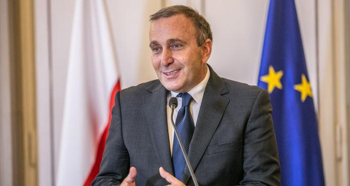 Były minister spraw zagranicznych Grzegorz Schetyna