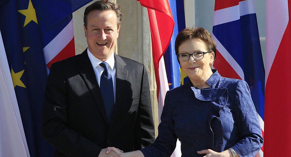 Brytyjski premier David Cameron na spotkaniu z polską premier Ewą Kopacz, 29 maja 2015